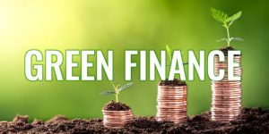 Beitragsbild_Andreas_Dolezal_Green_Finance