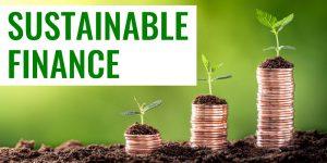 Beitragsbild_Andreas_Dolezal_Sustainable_Finance